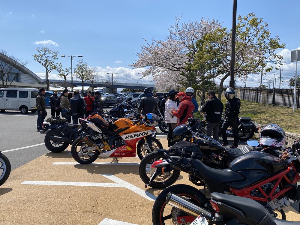 琵琶湖の海津大崎の桜満開ツーリング その3