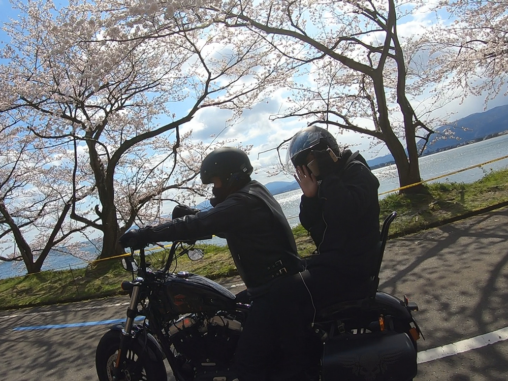 琵琶湖の海津大崎の桜満開ツーリング その13