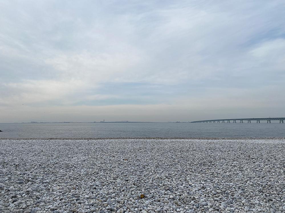 新年のご挨拶とマーブルビーチ その3